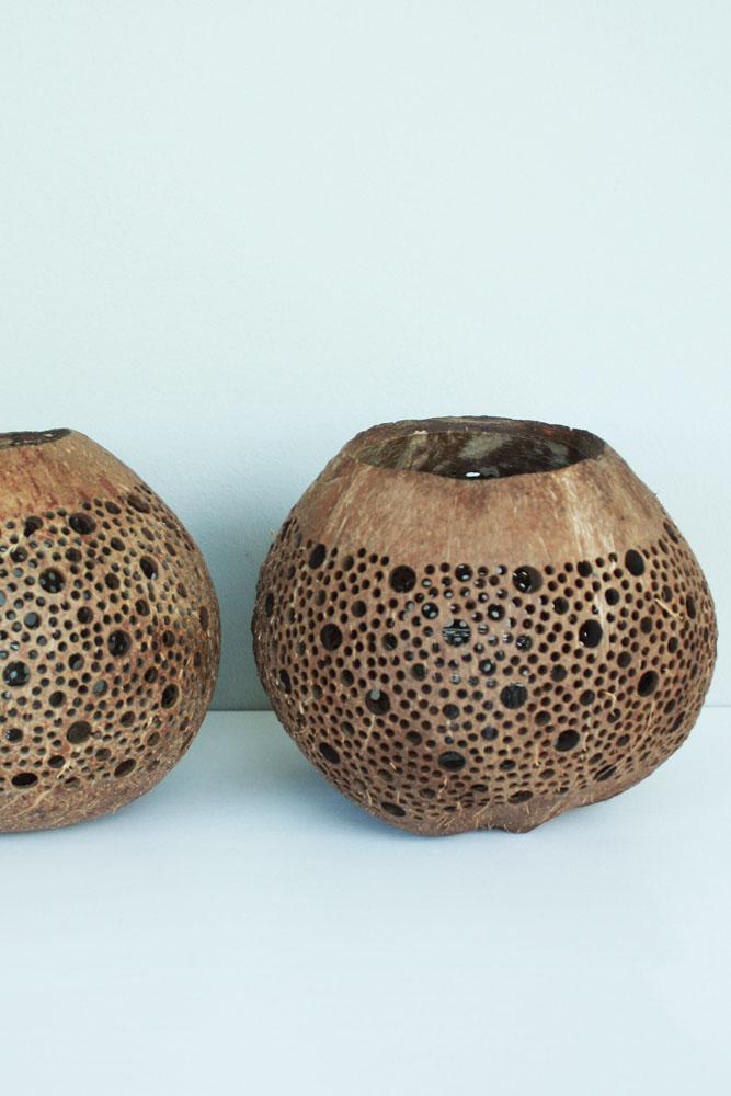 Manggis Living kokosnoot